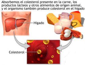 como controlar el nivel de colesterol con herbalife